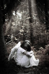 Angel, shine your light on me