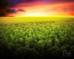 Genjer Scenery by osamon