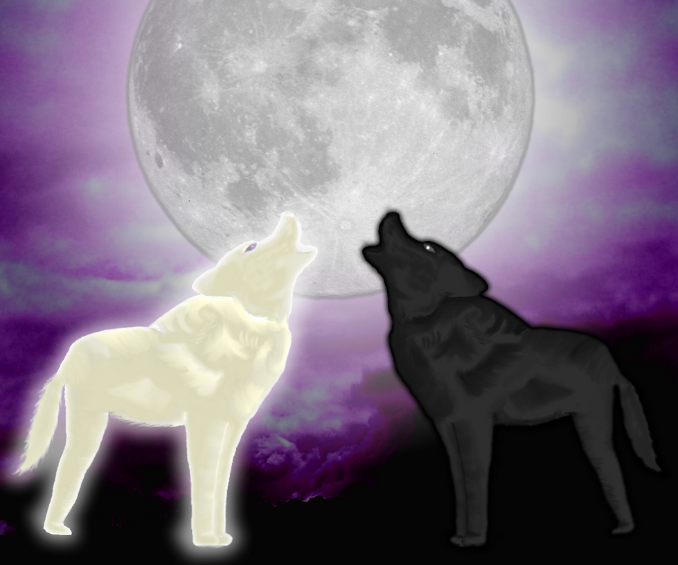 Wolf Howling At The Moon Black And White Howling by the-black-wolf-co-