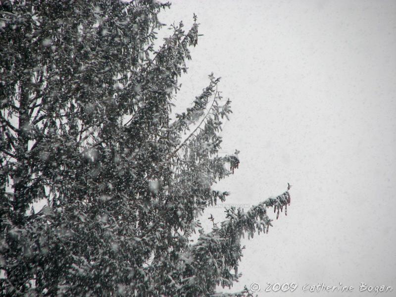 Christmas-like by rapturesrevenge