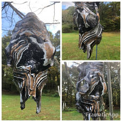 Hydro Dipped Cow Skull