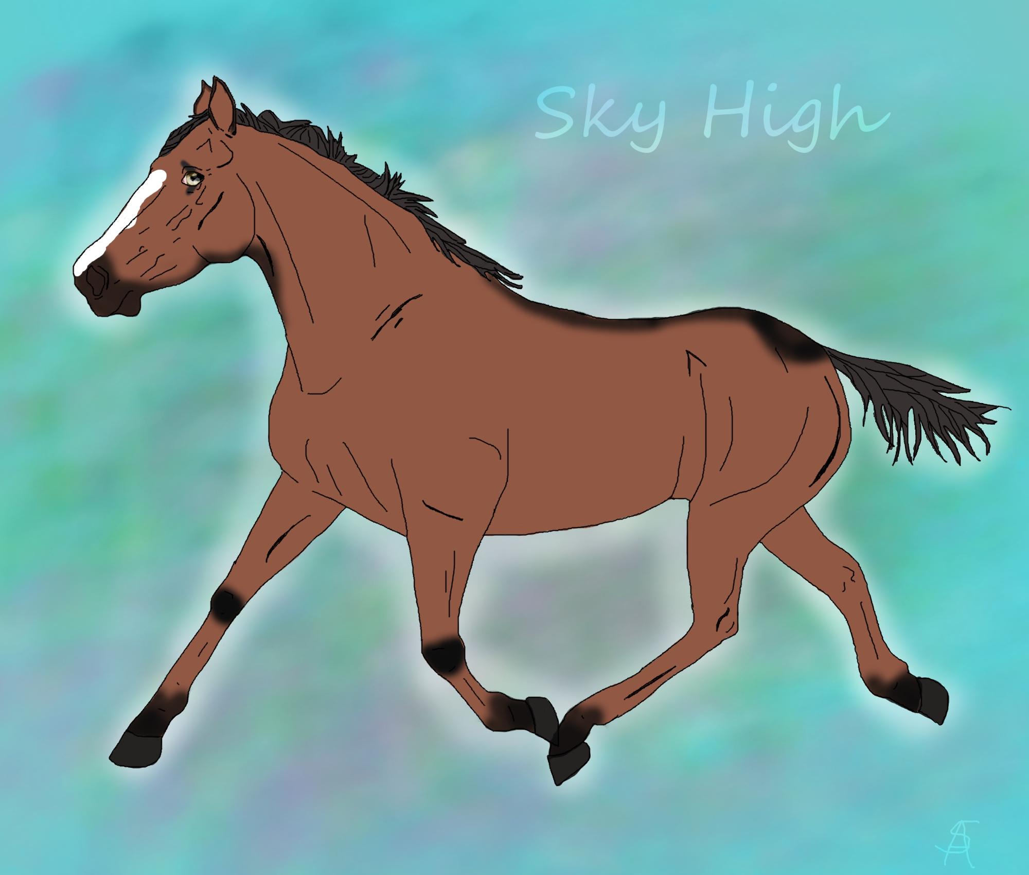 Sky High by SunnyBlueDay
