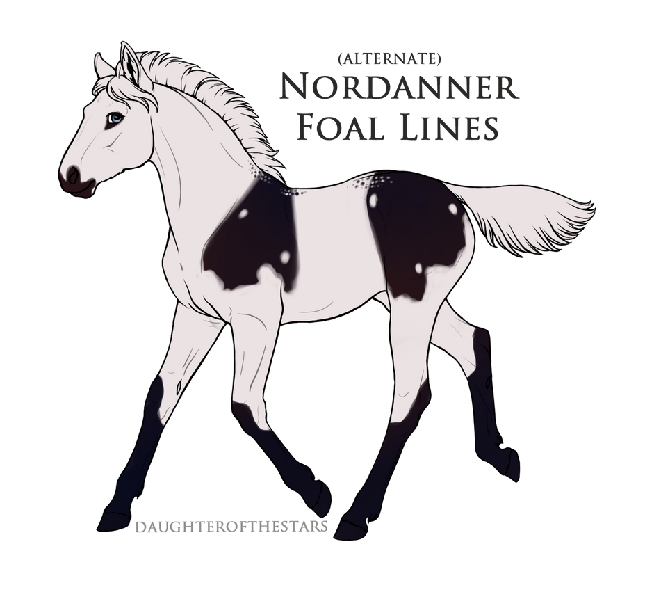 ID A1599 Foal Design by Shadie-Nordanners