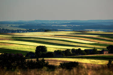 landscape 19 by Morlen
