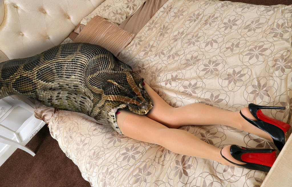 snakes with girl sex