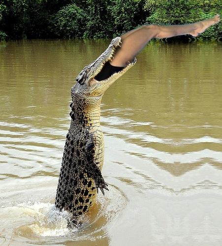 croc vercomics
