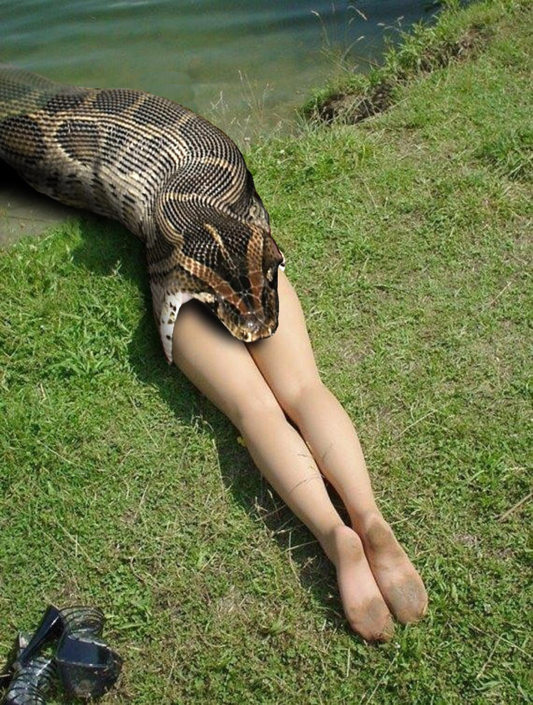 Phrase nude girls with big snakes are going swimmingly