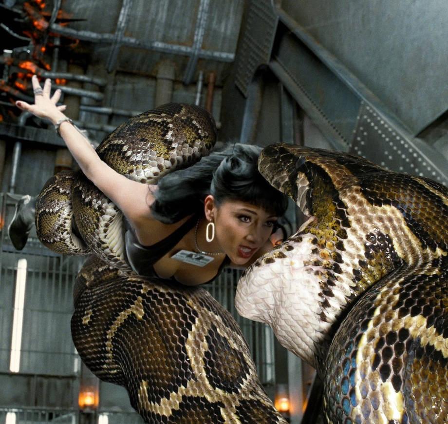 Snake Vore 511 Lilly Poison By Andromeda111 On Deviantart-6744