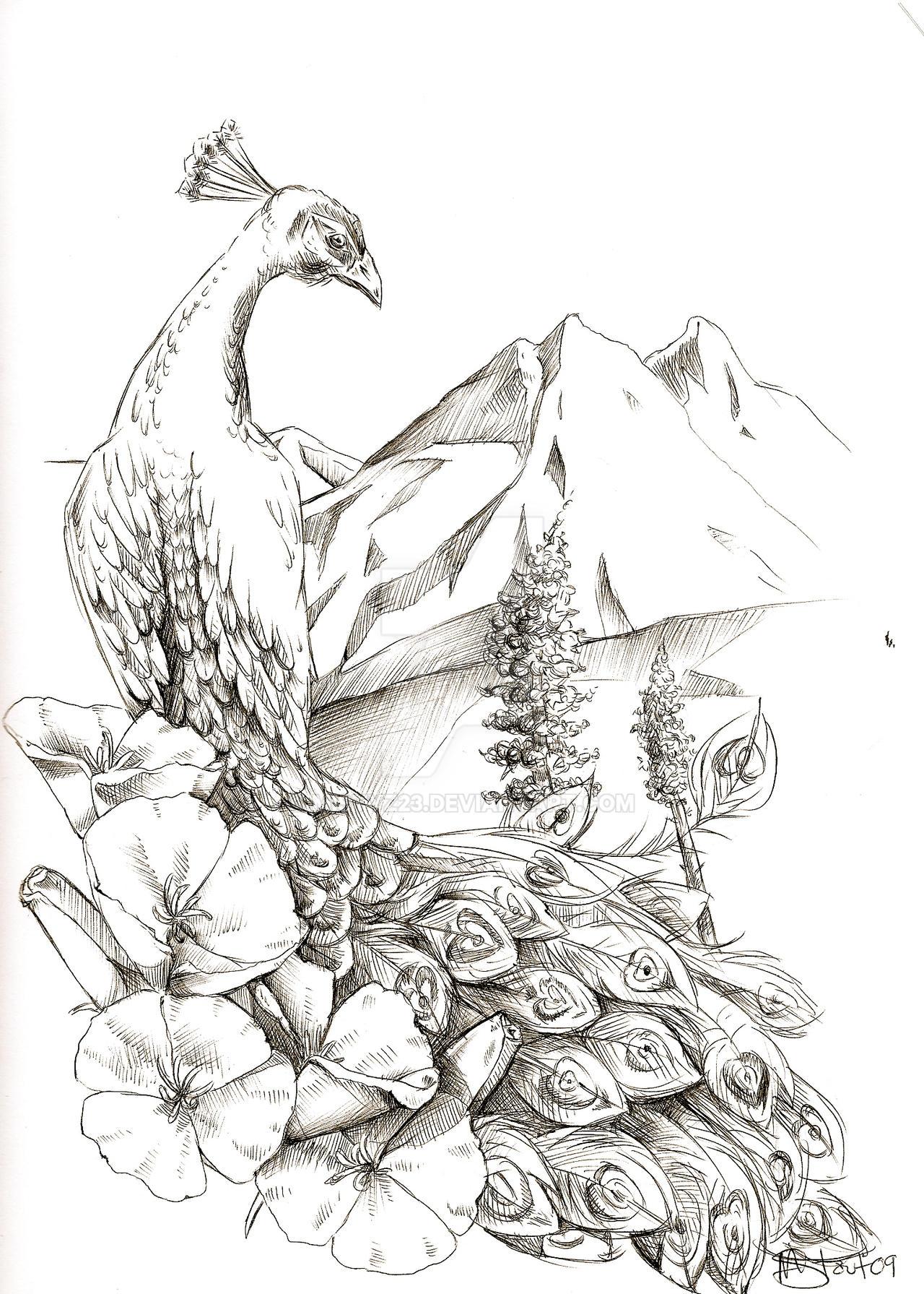 Peacock Tattoo Design by mistyz23 on DeviantArt