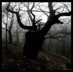 Dark Cernunnos by Hluthvik