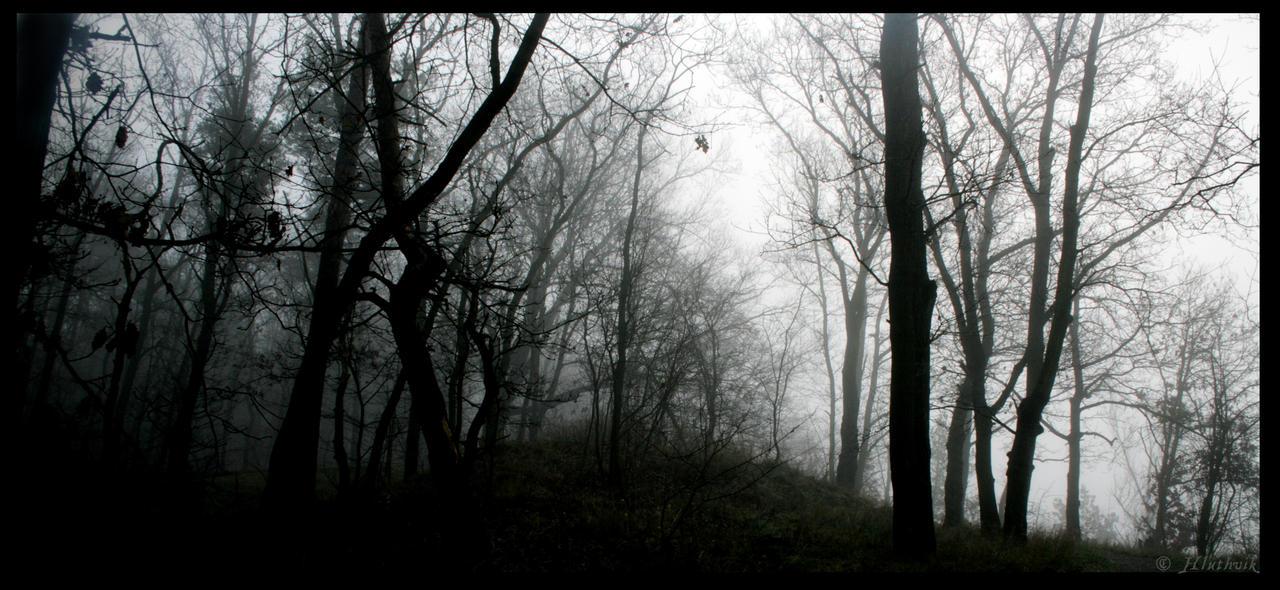 Nebelumwogt by Hluthvik