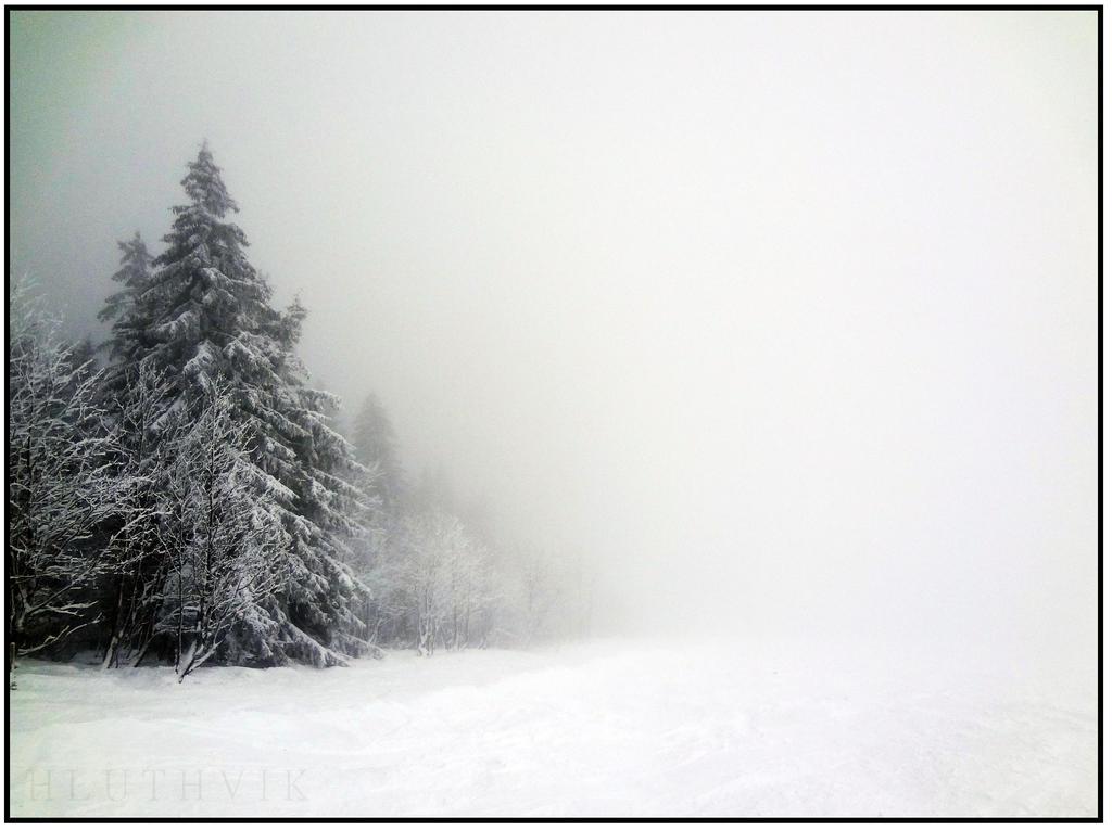 Schwarzwald by Hluthvik