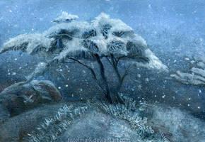 Winter by Tistelmark