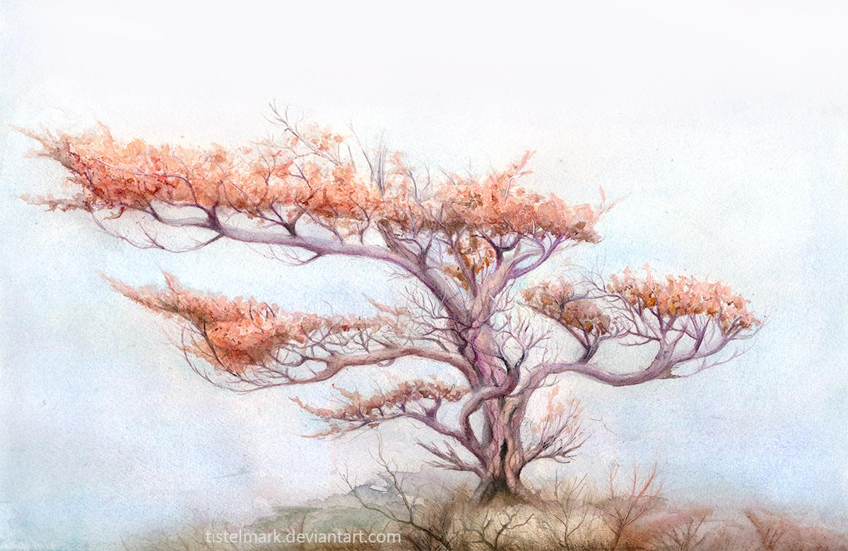 Autumn Tree by Tistelmark