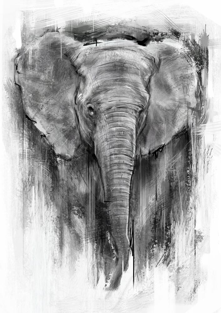 Elephant Digital Painting by vkupila