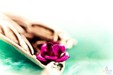 beauty rose by lilmarie