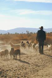 goat troubadour by Ferreson