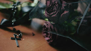 Roses for a widow