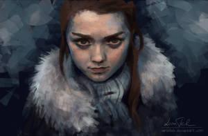 Arya Stark of Winterfell