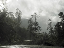 rain by wam17