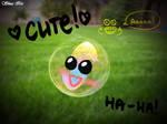 Cute bubble