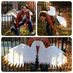White Bronze Tipped Cosplay Wings