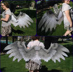 Custom Paint - Grey Griffin Wings