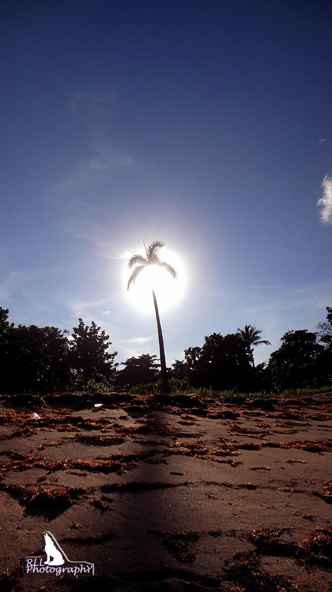Through the Sun by LazareLobo