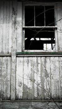 abandoned park 02