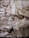 Wet Carboard- texture