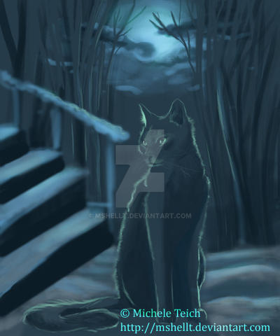 Cat In the Moonlight by Mshellt