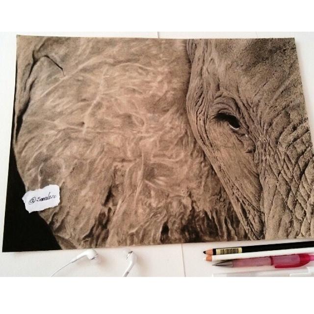 Elephant Portrait drawing by mazdisna
