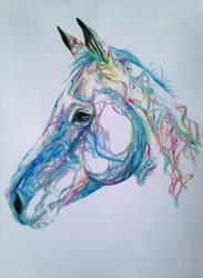 A Horse called Magic