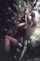 Last Arrow - Rise of the Tomb Raider by skyseed21