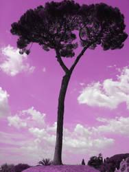 A tree to rest by MickelHiwatari