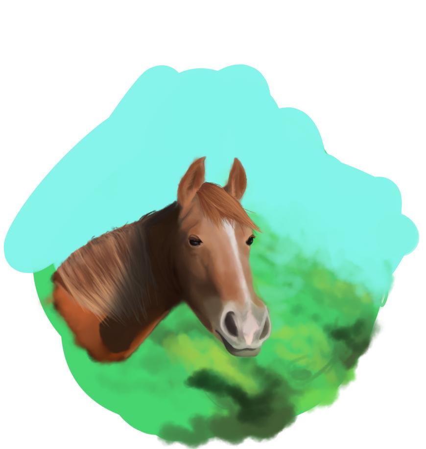 horse by mateoatya