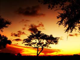 chaotic sunset by Patttycake
