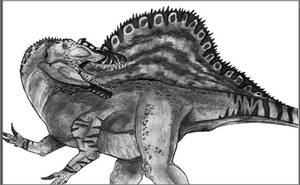 Spinosaurus m. by Fragillimus335