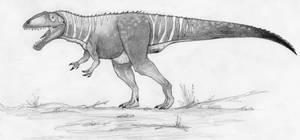 Great Shark Lizard-Carcharodontosaurus saharicus