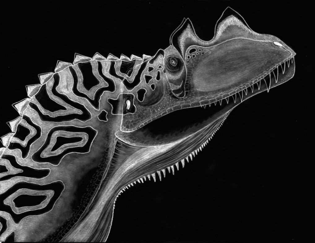 Negative Ceratosaurus by Fragillimus335