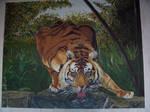 Tigre s'abreuvant
