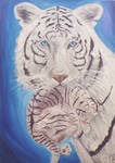 Tigresse blanche et son petit by Midori-ossan