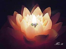 Light of hope by Midori-ossan