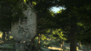 Folly in the Forest
