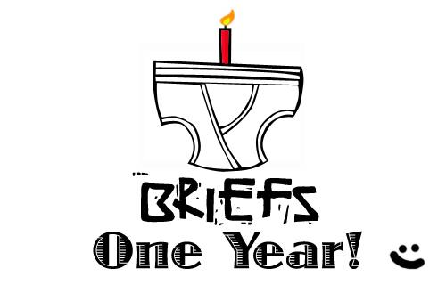 One Year of Briefs by stixman