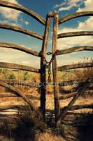 locked up by KCELphotography