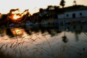 goodbye summer, hello autumn by KCELphotography