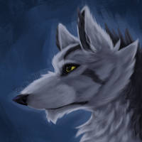 Mightyena Drawing(+Speedpaint) by Lord-Dorian