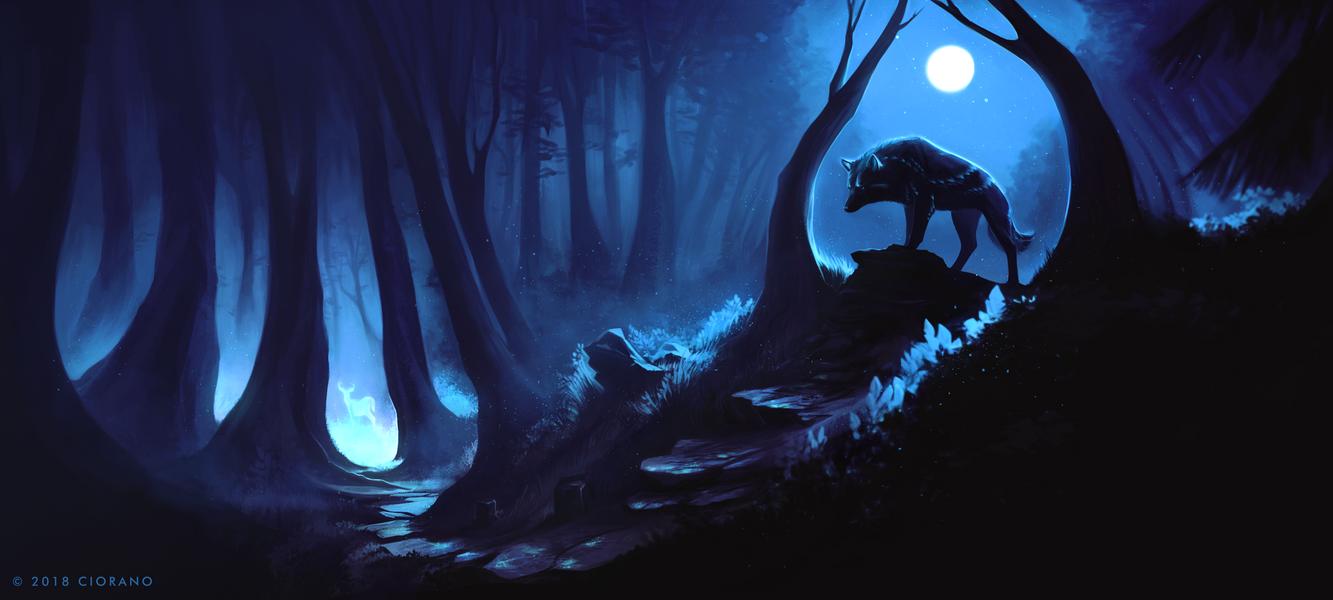 The Sacred Creature by Ciorano