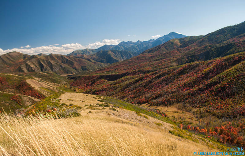 Autumn Moutain View by Moohoodles